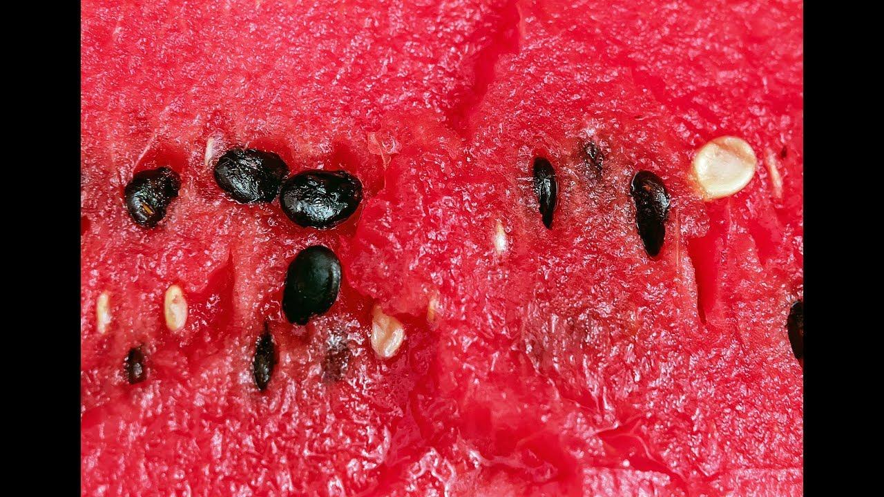 хрустальном полезно ли есть арбузные косточки вырастить лилии